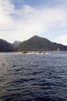 Lac Manapouri -23- Doubtful Sound