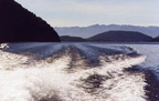 Lac Manapouri -01- Doubtful Sound